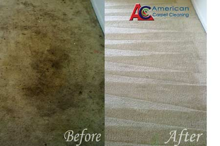 Order Carpet Cleaning Service Ca Free Quote